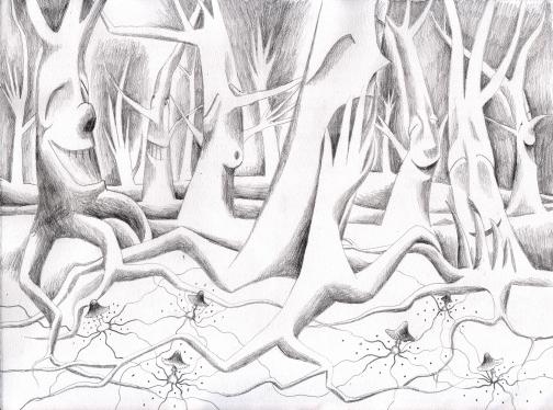 Wald mit Pilzen2